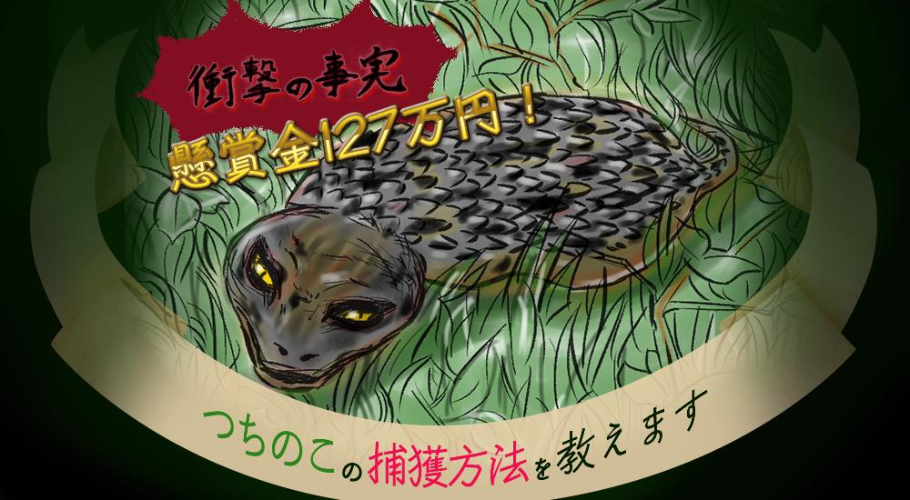 f:id:kakijiro:20160418114654p:plain