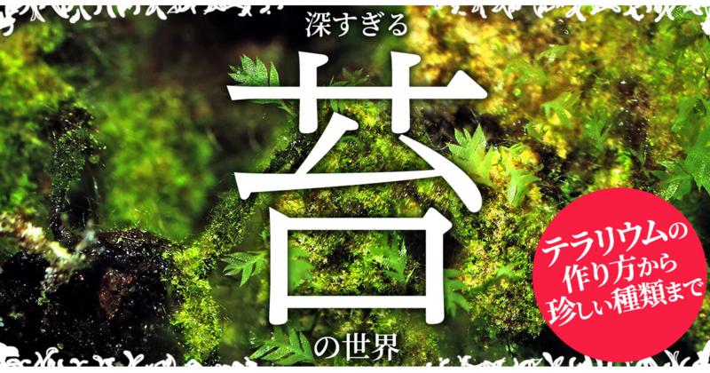 深すぎる苔の世界~テラリウムの作り方から珍しい種類まで~